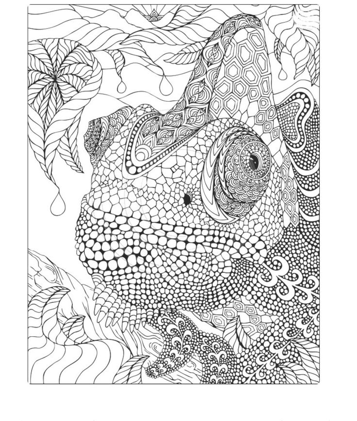 17 best mandalas images on pinterest coloring pages adult coloring and coloring books. Black Bedroom Furniture Sets. Home Design Ideas