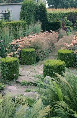 Boxwood, grasses, and Sedum 'Matrona'
