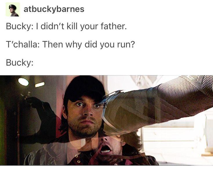 Bucky Barnes, king t'challa of Wakanda, black panther, marvel, mcu, avengers