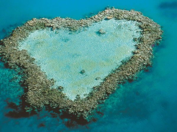 The Heart Island on the Whitsundays (Great Barrier Reef) at Honeymoon? #monogramsvacation #wondersthroughtheages