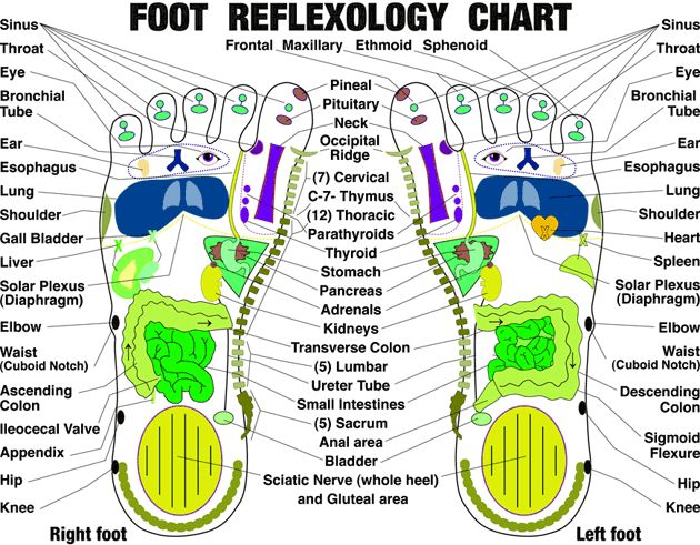 61 best diagrams and reflexology images on pinterest acupressure according to chinese and japanese belief our human body has over 360 acupuncture points with more than 60 acupuncture points found on the sole of the foot ccuart Image collections