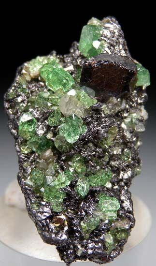 Titanite, Tsavorite on Graphite from Merelani Hills, Arusha, Tanzania [db_pics/pics/t344a.jpg]