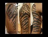 tiger stripes tattoo on my inner right calf because I am I tiger and there are the scars of my stripes