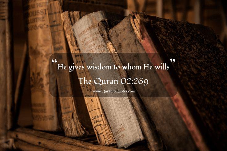 "#84 The Quran 02:269 (Surah al-Baqarah) ""He gives wisdom to whom He wills.""…"