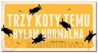 """""""Trzy koty temu byłam normalna"""" - czy znasz kogoś, komu pasowałby taki napis? :)"""