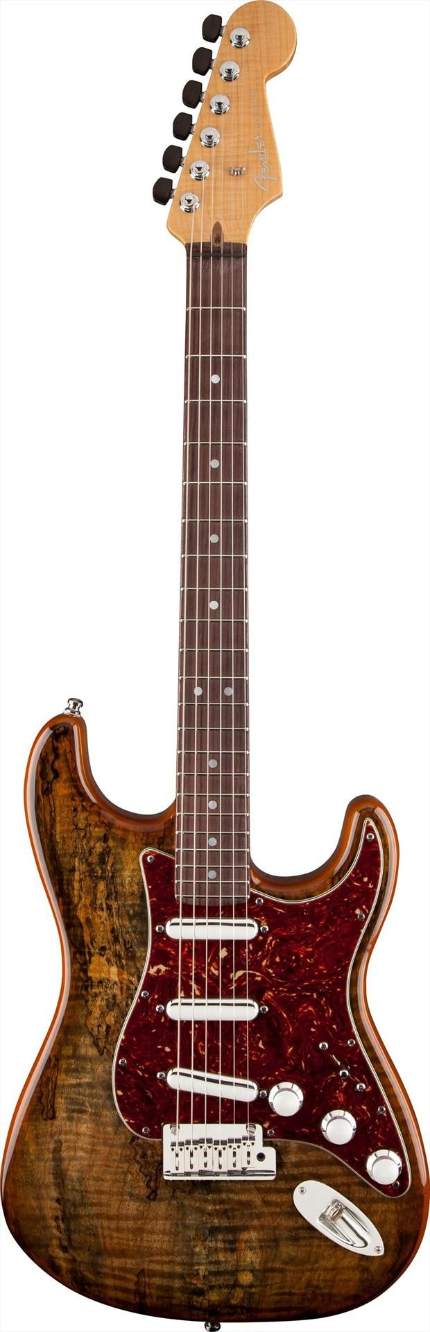 Fender Custom Shop Spalted Maple Top Artisan Buckeye Stratocaster | Andertons