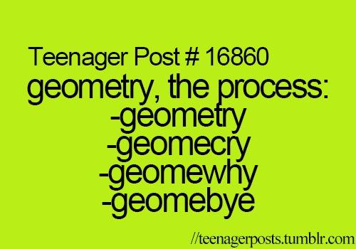 do my geometry homework