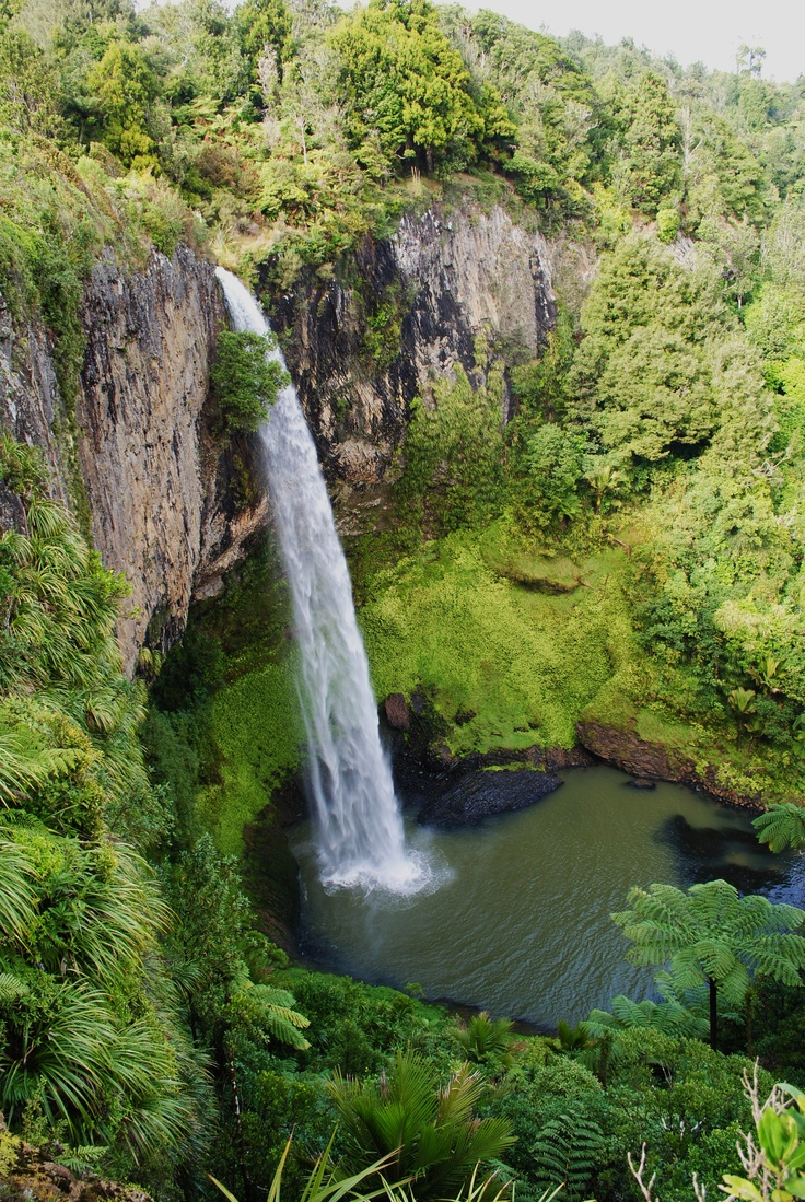 Bridal Veil Falls near Raglan New Zealand Claire Lambert - Photographer