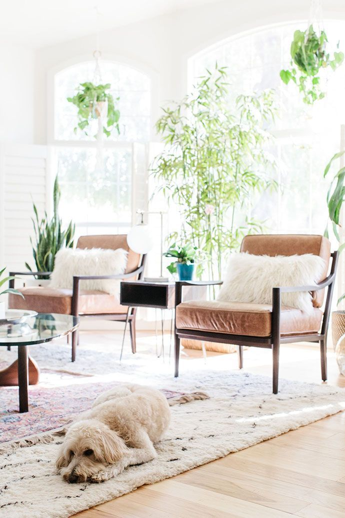 Tall plants and hanging plants looks so chic in this eclectic traditional living room