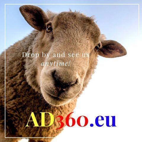 http://www.ad360.eu/about-us/ #Sheep #Jokes