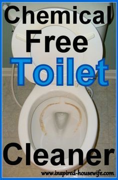 Clean Your Dirty Toilet With Homemade Bowl Cleaner