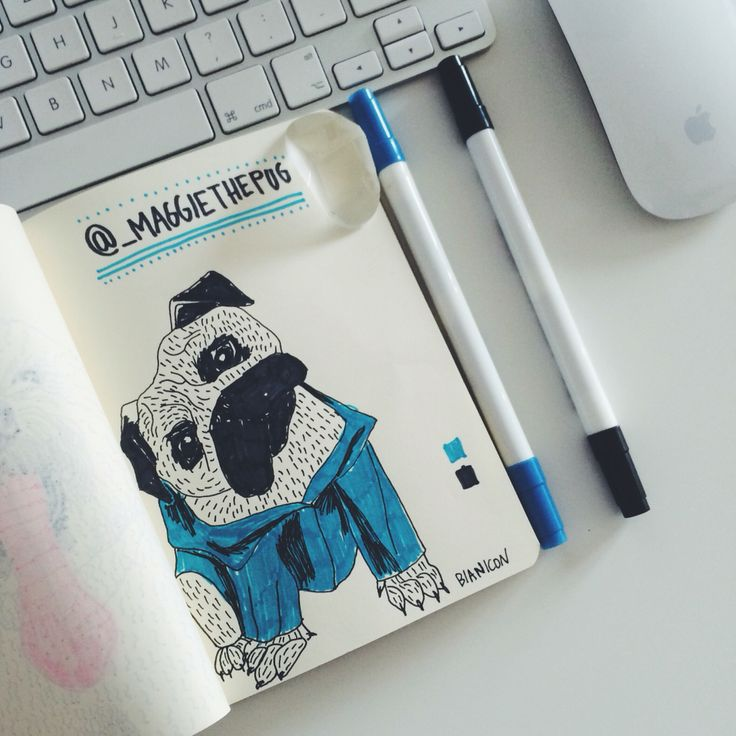 #bianicon #pug #illustration #minimal #white #unreal