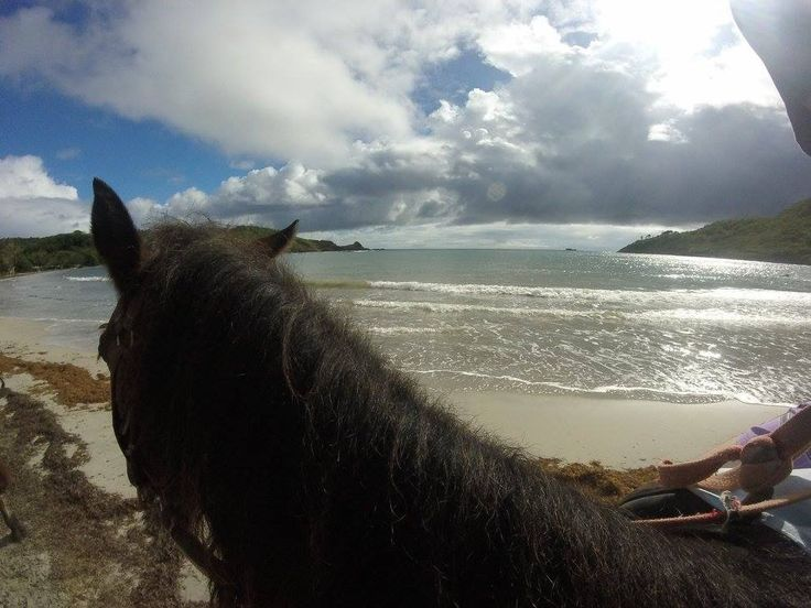 Horse riding on a beach in St Lucia - I am not really a horse person but this was an experience well worth doing.