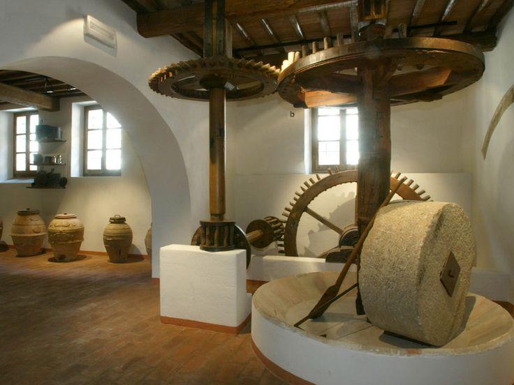 MOO - Museo Dell'Olivo E Dell'Olio a Torgiano, Umbria