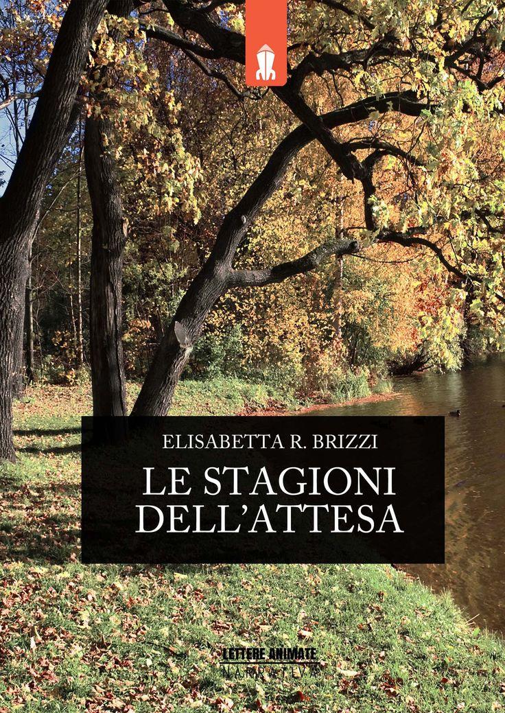 Libero arbitrio blog: Le stagioni dell'attesa di Elisabetta R. Brizzi.