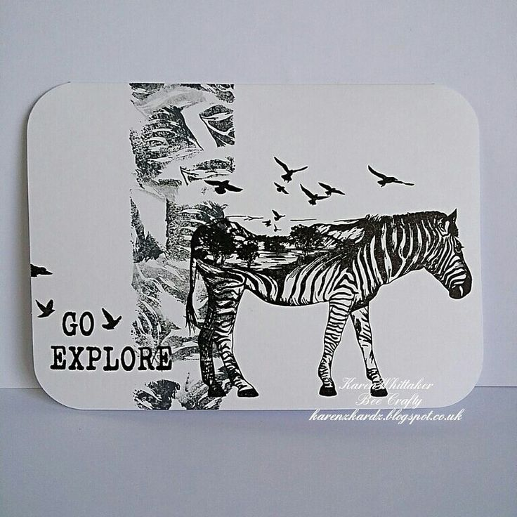 The gorgeous Scenery Zebra from the new Scenery Animals collection by Bee Crafty xx The stripes from its body were used to create the background panel x  #beecraftystamps #dtsample #sceneryanimals #sceneryzebra #travelwords #stamps #stamping #monochrome #creative #craft #ilovetocraft