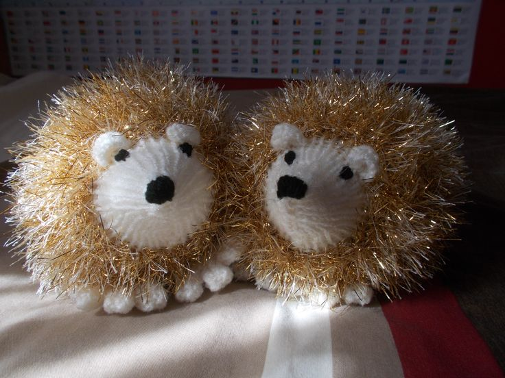 A pair of hedgehogs