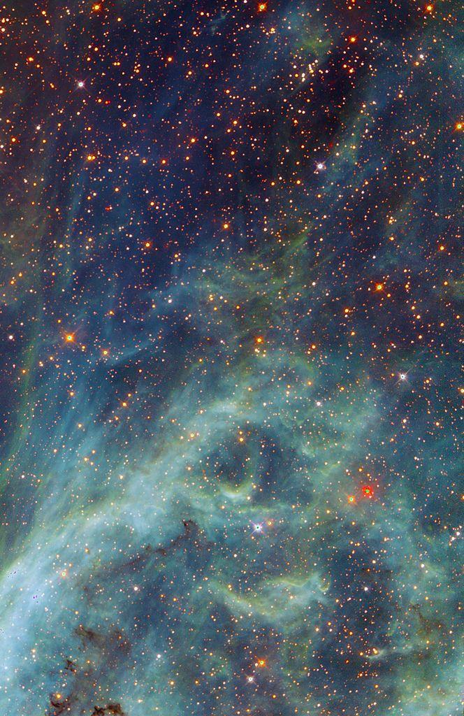 Here is the joy, here is the grief, here is the slaughter I have shaped into stars. -  Jeremy Radin, Dear Sal