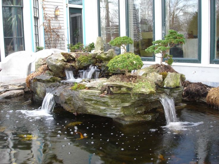 Bonsai island water feature cool bonsai for Backyard ponds and water features