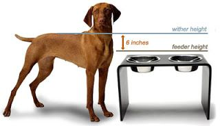 Formula for how high raised pet bowls should be.