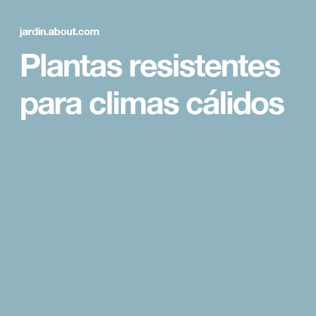Plantas resistentes para climas cálidos