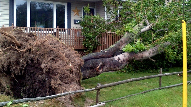 In Pictures: Tropical Storm Leslie strikes Atlantic Canada: Strike Atlantic, Canadian News, Leslie Strike, Tropical Storms, Storms Leslie, Atlantic Canada