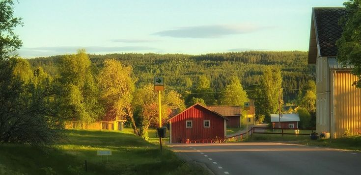 Conocer Suecia durante el otoño - http://www.absolutsuecia.com/conocer-suecia-durante-el-otono/
