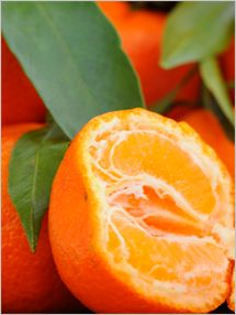 Clementine: Excellent source of vitamin C, fat free, saturated fat free, cholesterol free, and sodium free.