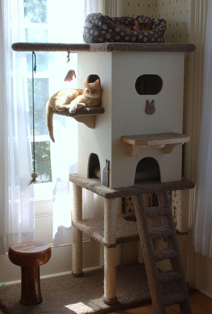 Ça me prendrait ça pour mon futur chat !