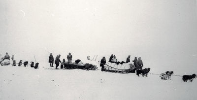 anderson-expedition-1511.jpg 400×203 pixels