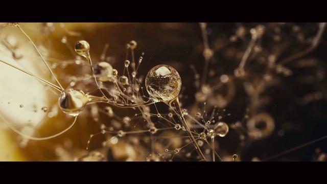 Dvein // EVA 'Main Titles' on Vimeo