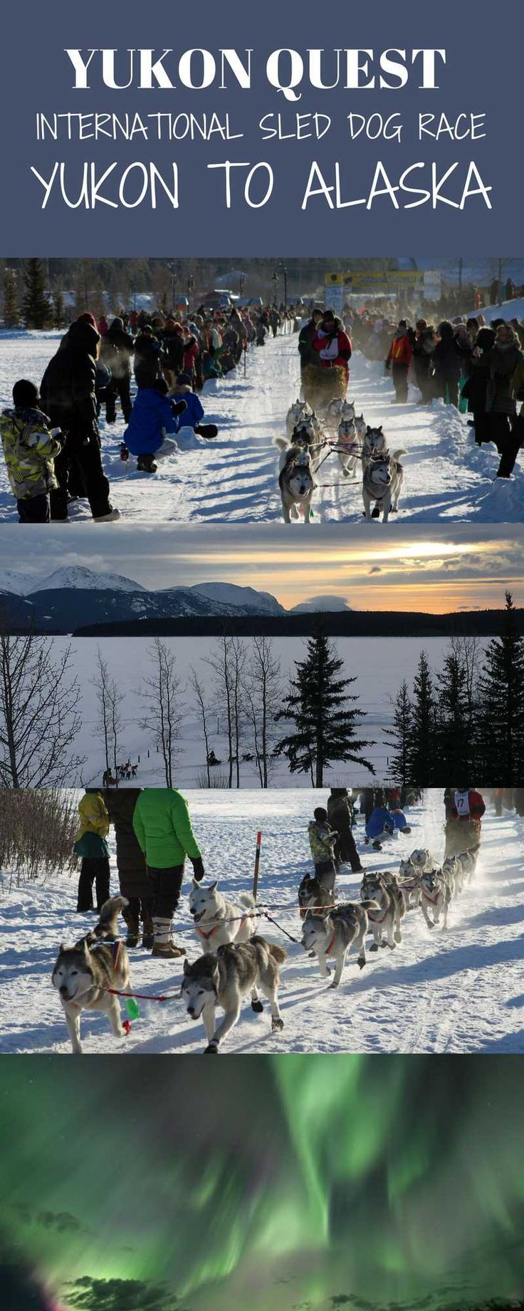 The Yukon Quest is a premier dog sled race between Whitehorse in the Yukon in Canada and Fairbanks, Alaska.