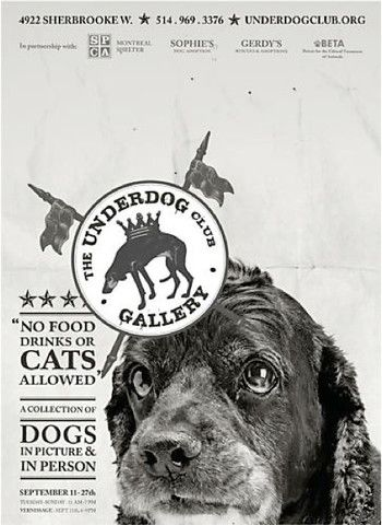 Contemporary Montreal Poster, Underdog: Shiloh - Breslaw