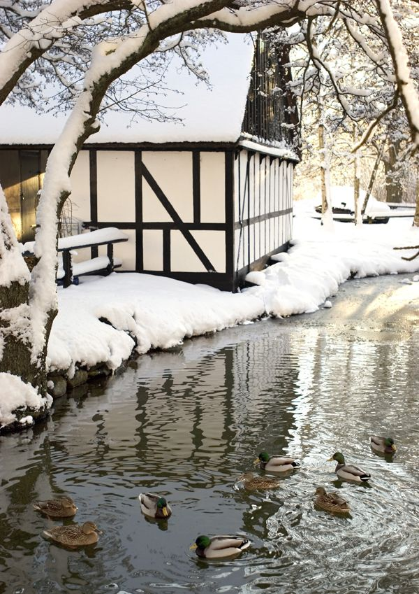 Winter in Denmark | Anders Hede, Courtesy of Danish National Tourism Organization Re-pinned by #Europass