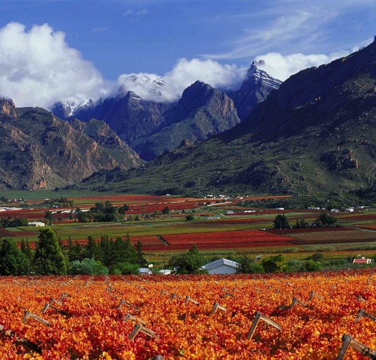 Hex River Valley Western Cape