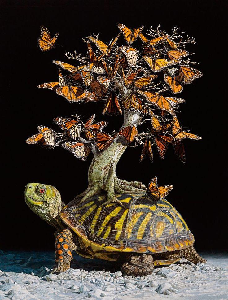 Lisa Ericson imagine des Écosystèmes fantastiques sur le Dos des Tortues (1)