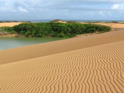 Guajira es el lugar perfecto si se trata de encontrarse con la naturaleza y con el contraste de las dunas, los arrecifes, los cáctus, las rancherías, los wayúus y un mar celeste sin igual.