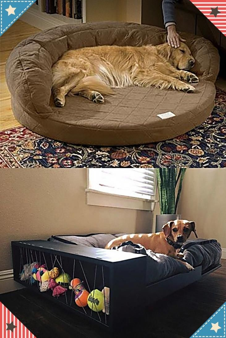 Best Dog Beds For Large Small Dogs Get This Now Dog Stairs For Beds Dog Steps For Beds Or Even See Details About Dog Steps For Bed Dog Bed Unique Dog