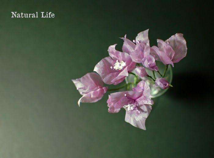 ナチュラルな暮らし。: 常夏の花シリーズ新作!ブーゲンビリア