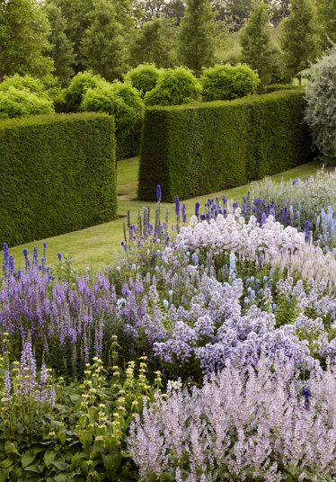 Kingham Hill House, Kingham. When the present owners bought it, Kingham Hill House was a sea of brambles and ground elder. Now, however, it is a haven of foxgloves, delphiniums, topiary, wisteria and Japanese maples.