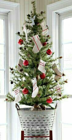 "BEAUTIFUL TREE IN ""MY"" OLIVE BUCKET"