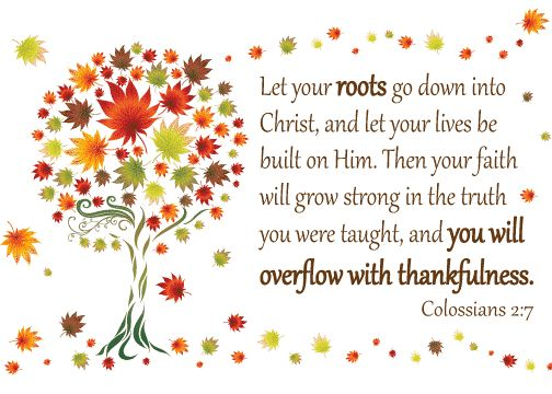Colossians2_7 roots