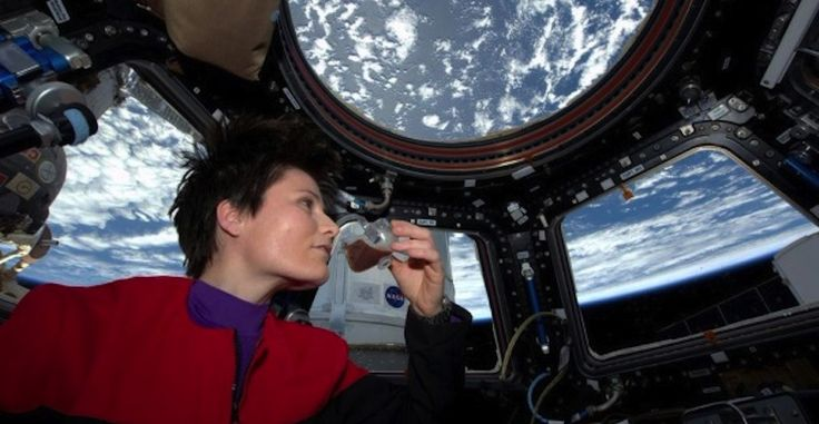 Ya están a la venta las peculiares tazas impresas en 3D utilizadas en la Estación Espacial Internacional - http://www.hwlibre.com/ya-estan-la-venta-las-peculiares-tazas-impresas-3d-utilizadas-la-estacion-espacial-internacional/