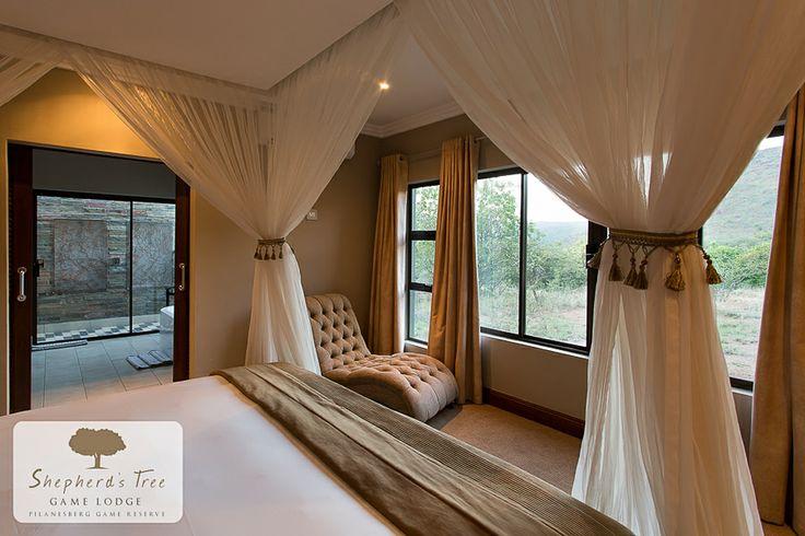 Executive Room ~ Shepherd's Tree Game Lodge ~ www.shepherdstree.co.za