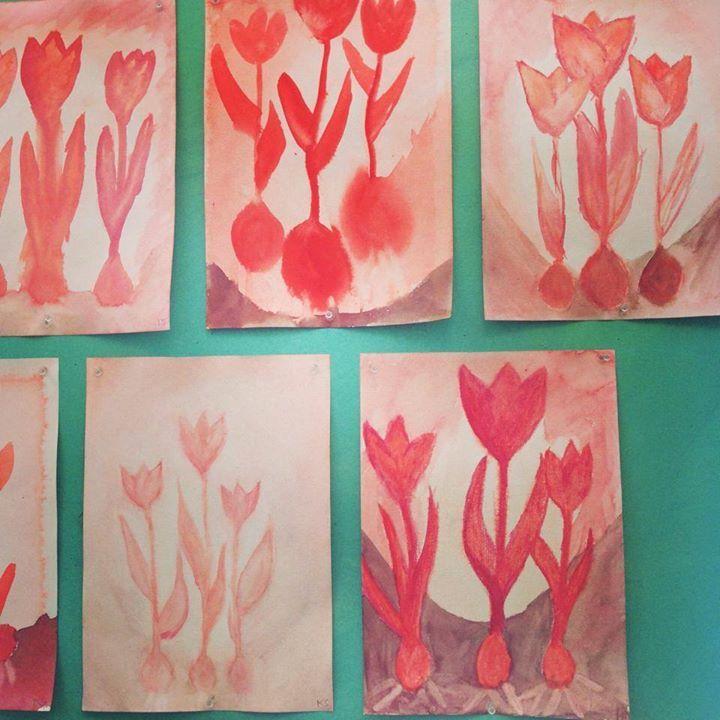 Waldorf ~ 5th grade ~ Botany ~ Tulips ~ watercolor painting