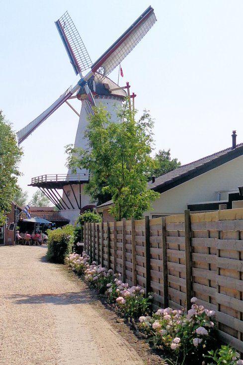 Aan de Burghseweg, tegenover de Beatrixboom uit 1938, staat de molen van Haamstede. De Graanhalm is een witte ronde stellingmolen. De molenromp loopt nadrukkelijk taps toe. De molen werd gebouwd in 1847. In de molen is een winkel waar je grote pakken volkorenmeel kunt kopen, bakbenodigdheden, maar ook Zeeuwse wijn en andere souvenirs. De oude schuur naast de molen werd vroeger gebruikt voor graanopslag. Nu kun je er lekkere ambachtelijke pannenkoeken eten.