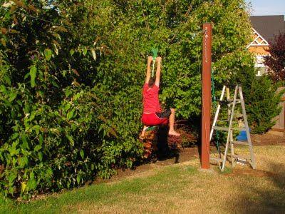 1000 ideas about zip line backyard on pinterest