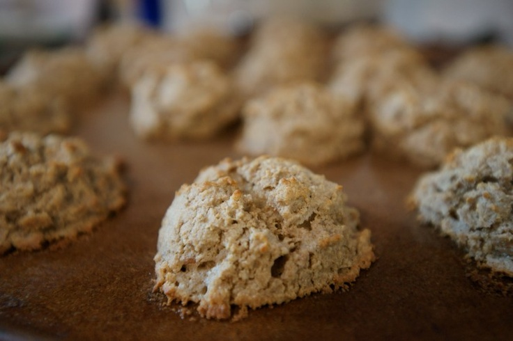 Rosemary Biscuits on Pinterest | Biscuits, Biscuit recipe and Parmesan ...
