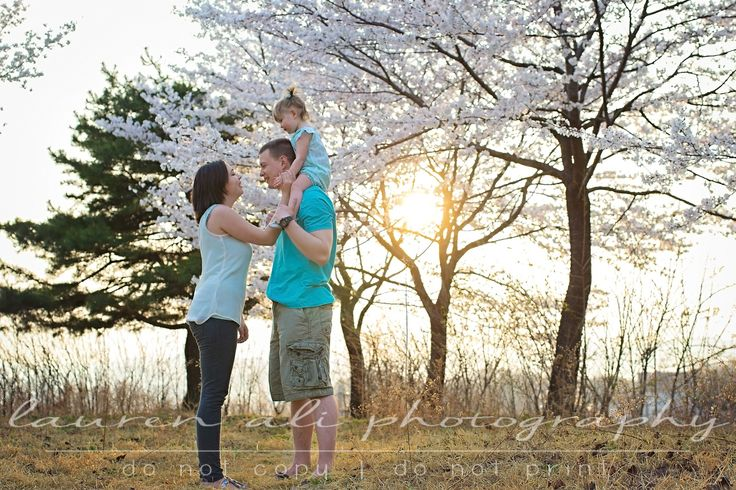 {Family}  I don't think it gets any better than a beautiful family + cherry blossoms + golden light | Lauren Ali Photography | www.laurenaliphotography.com