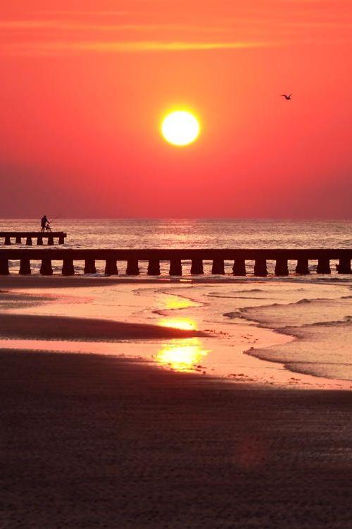 Beach Sunrise | Jesolo, Venice, Italy #sunrise #beach_sunrise #venice